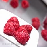 Low Carb Raspberry Frozen Dessert Non-Dairy with Xylitol